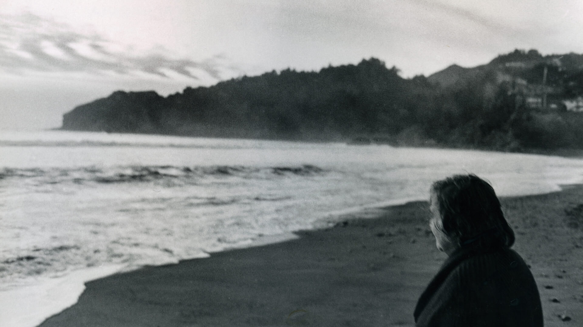Etel  Adnan: Her Life, Her Work, Her Cities <br> Simone Fattal, Jean Frémon, Lamia Joreige and Serhan Ada