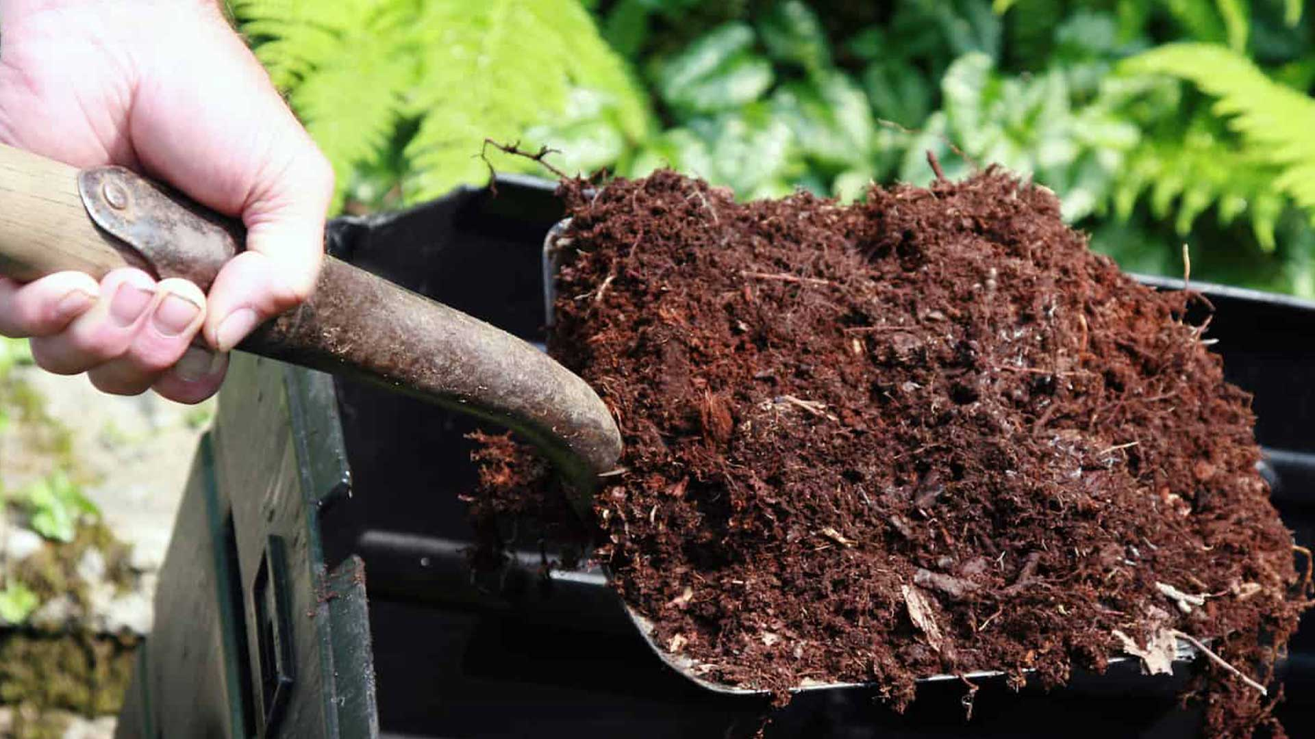 The Compost Story