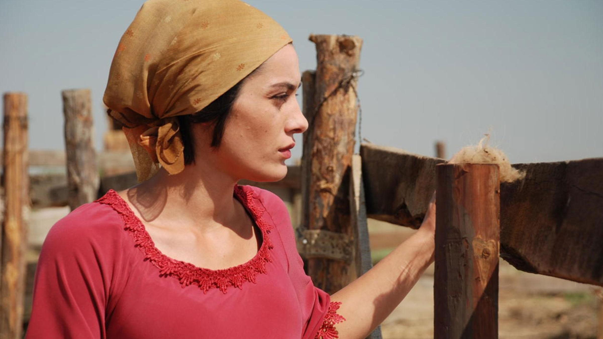"""""""Bu Kino Çox Gözal""""<br/> Cinema of Azerbaijan"""