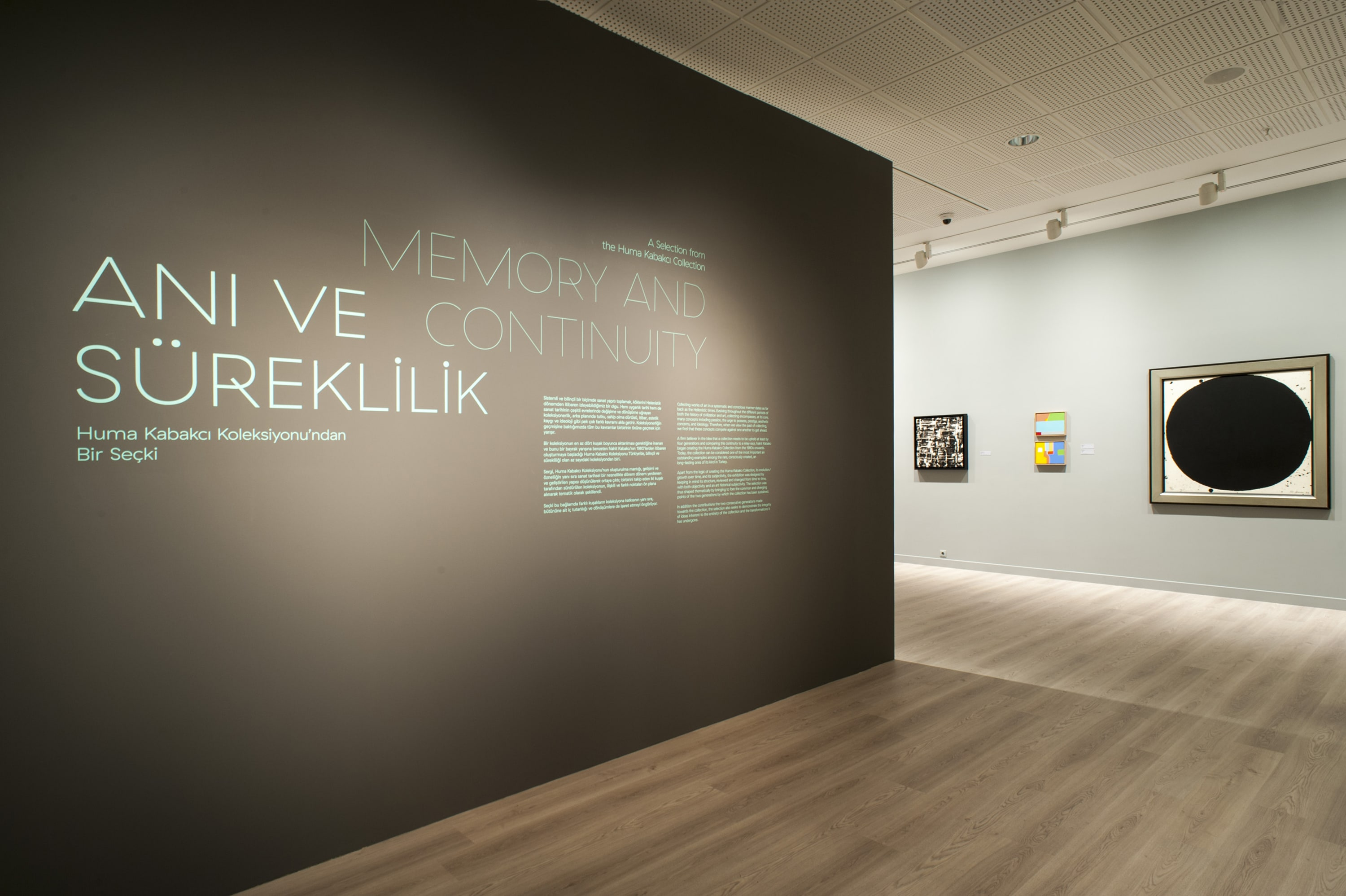 Memory and Continuity gallery 1