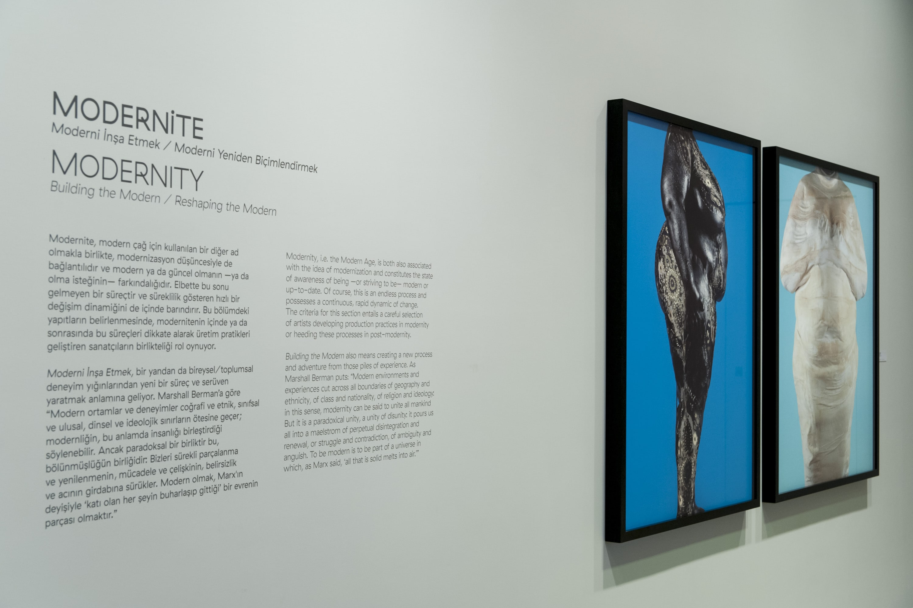 Memory and Continuity gallery 22