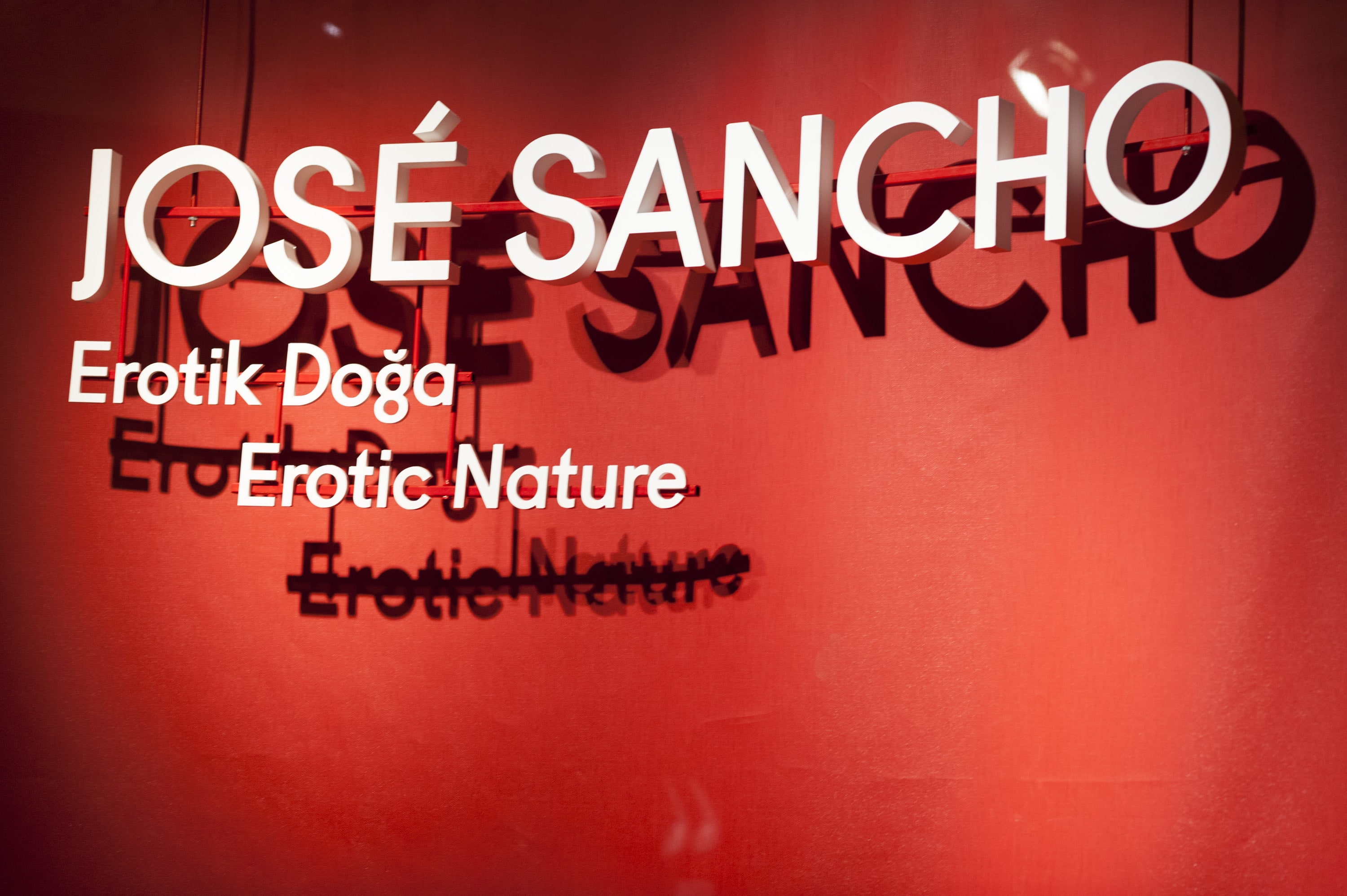 José Sancho gallery 7
