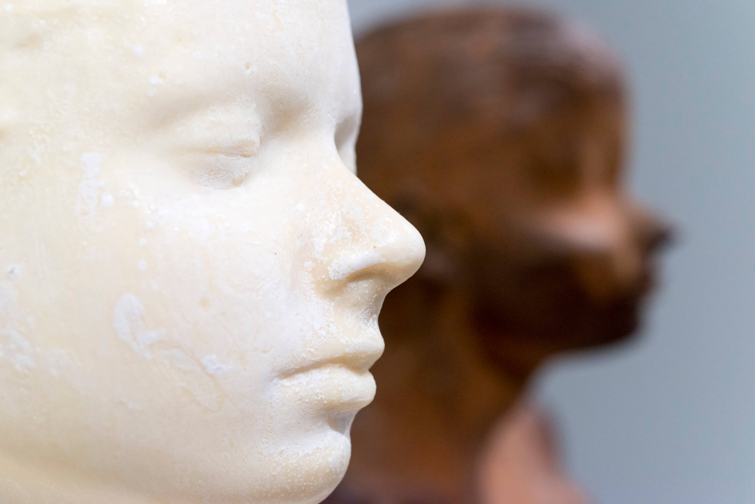 Janine Antoni Look At Me!